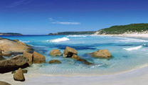 Book cheapest flights to Perth and visit Dolphin Bay