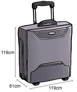 AirAsia baggage allowance