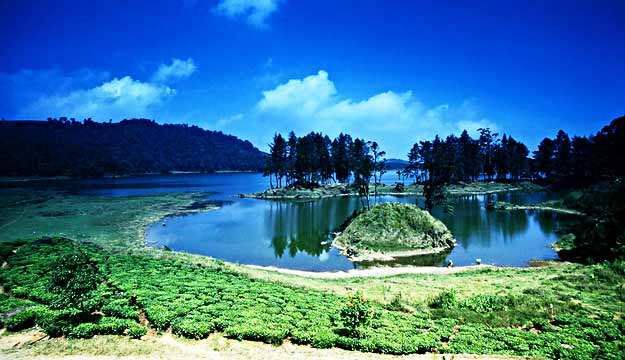 Bandung, Tea Plantations and Strawberry Farms