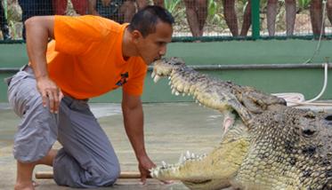 Langkawi Crocodile Adventureland