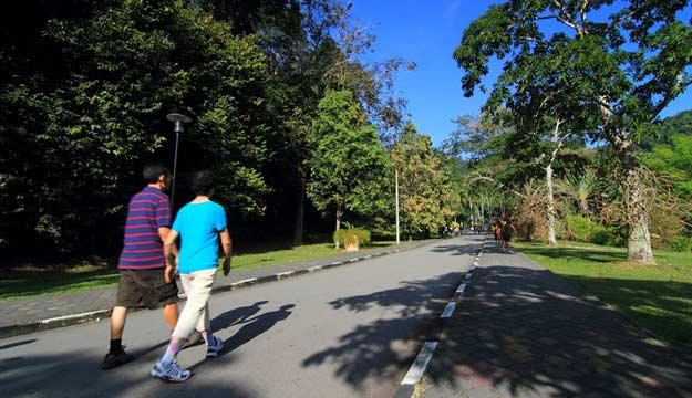 Vườn Bách Thảo Penang