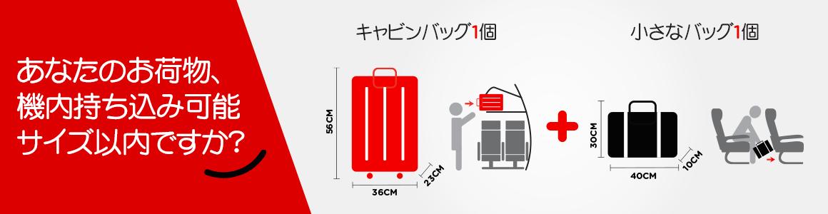 baggage-lp-jpja