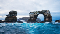 Book flights online to Darwin and visit Darwin Island