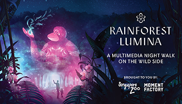 Hot Boarding Pass - Rainforest Lumina