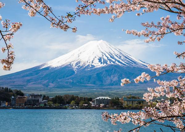 Liburan Ke Tokyo, Kerennya Jepang saat Musim Panas, Seru Banget!
