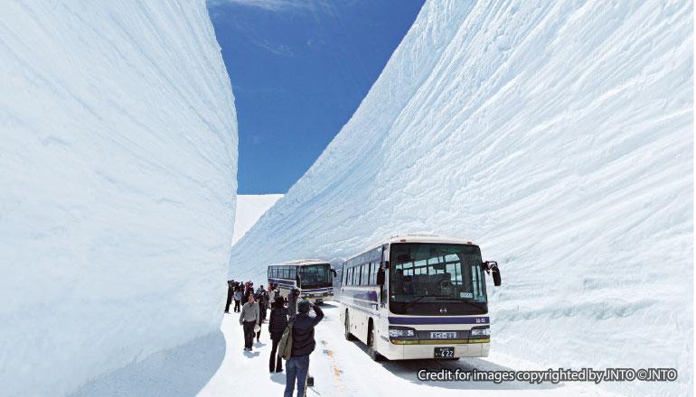 กำแพงหิมะทาเตยามะ คุโรเบะ Tateyama Kurobe Snow Wall (เส้นทางโตเกียว)