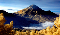 Book cheapest flights to Semarang and visit Dieng