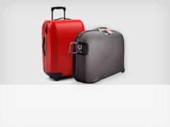 SB Checked baggage