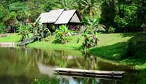 Book cheap flights to Kuching